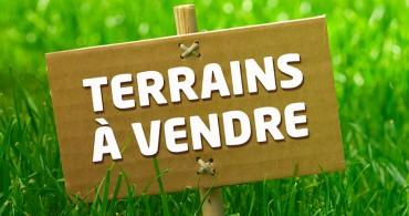 Terrain à bâtir - La Ferté-St-Cyr (41)